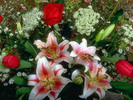 Thumbnail Gardening Sub-Topic: Flowers, Plants & More...